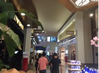 ハワイショッピング.png