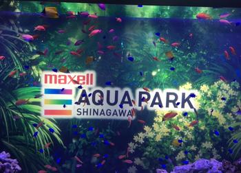 品川アクアパーク水族館10.png